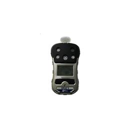 H2S测试仪PGM-2500四合一多气体探测仪报警仪