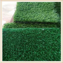品质人造草坪价格 人造塑料草坪网 草坪网厂家直销价