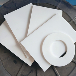 池州供应 塑料垫片 耐磨绝缘PTFE密封垫圈 支持按需定做