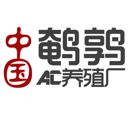 山东省青岛市鹌鹑苗多少钱一只