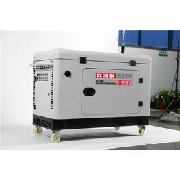 欧洲狮8千瓦柴油发电机