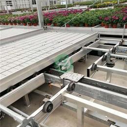 物流苗床 新式物流苗床 农业温室新方向