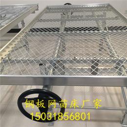 安平菱形苗床网-各种型号苗床定制-基地生产